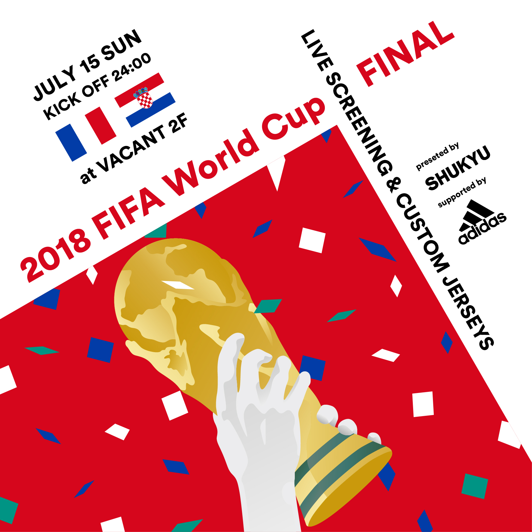 FIFA World Cup Final Live Viewing